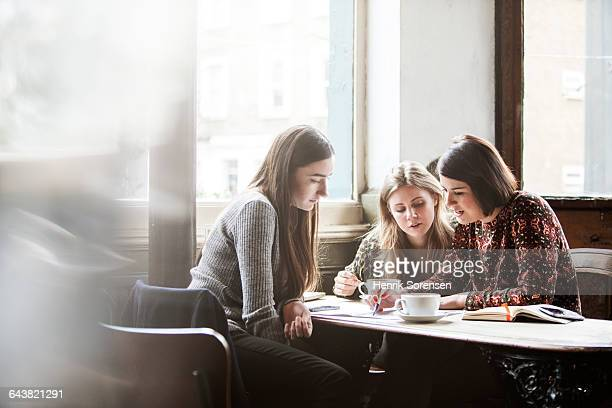 three friends at a pub studying - coffee shop stock photos and pictures