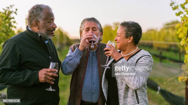 Three friends drinking the red wine at the winery in Long Island, New York State, USA.