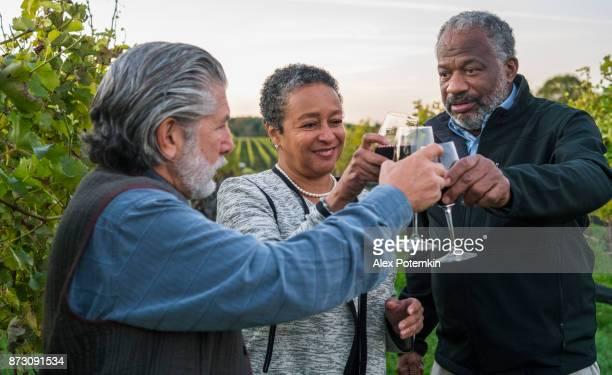 três amigos para degustação de vinho tinto na adega em long island, estado de nova york, eua. - usa - fotografias e filmes do acervo