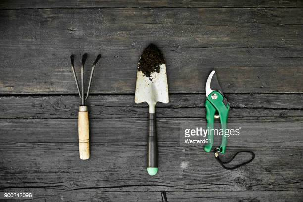 three gardening tools on dark wood - gardening equipment stock pictures, royalty-free photos & images
