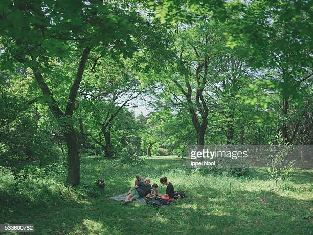 Three generation family at picnic in a forest park