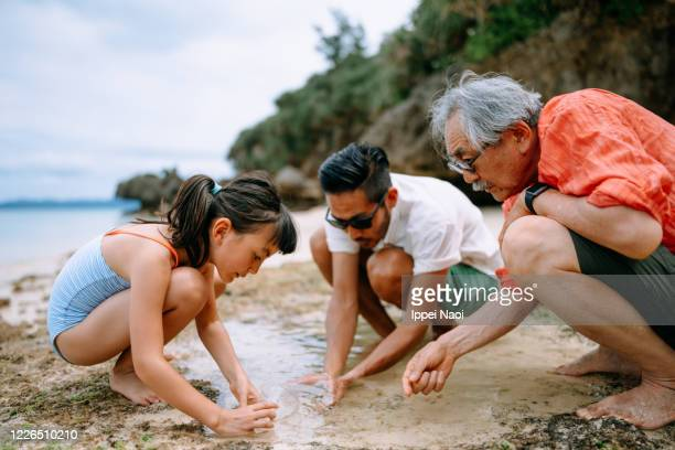 Three generation family playing in tide pool, Japan