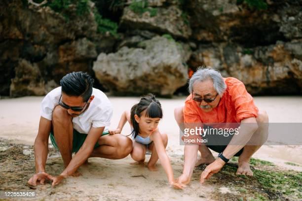 three generation family playing in tide pool - tidvattensbassäng bildbanksfoton och bilder