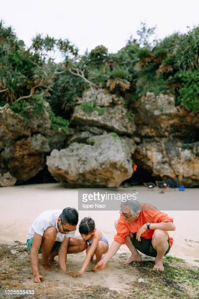 three generation family playing in tide pool - ippei naoi stock pictures, royalty-free photos & images