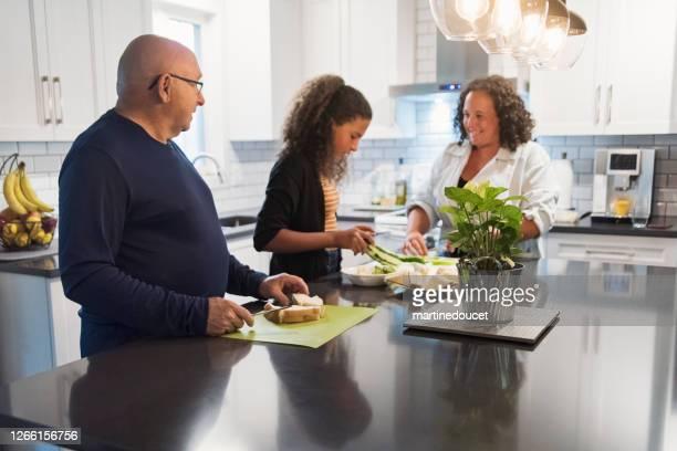 """familia de tres generaciones preparando el almuerzo en la cocina. - """"martine doucet"""" or martinedoucet fotografías e imágenes de stock"""