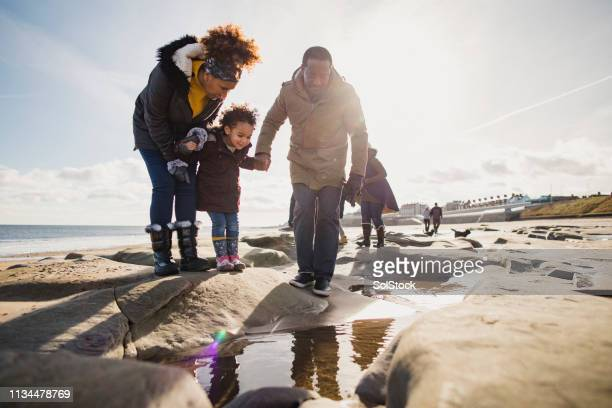 three generation family walking on the beach - whitley bay stock pictures, royalty-free photos & images