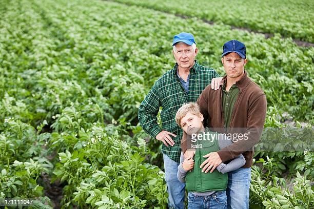 Three generations of men on family potato farm, in field