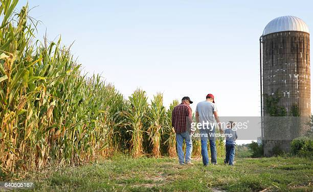 three generations on farm - iowa stock pictures, royalty-free photos & images