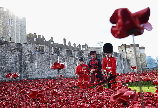 Three generations of the armed forces plant poppies at tower of three generations on the military chelsea pensioner albert willis yeoman warder paul cunilffe and mightylinksfo