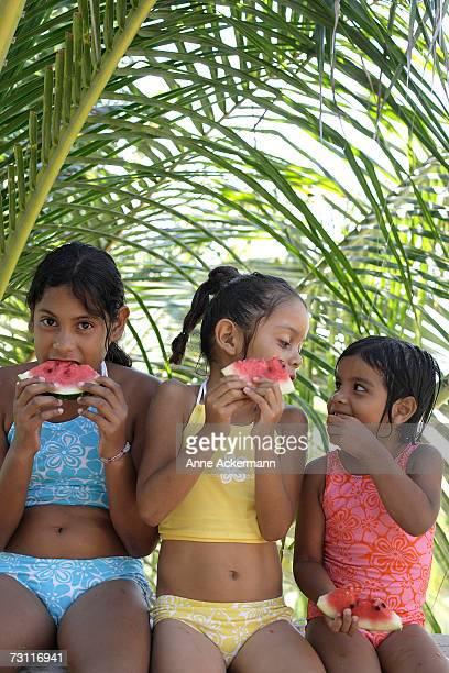Three girls (4-10) eating watermelon under palm tree