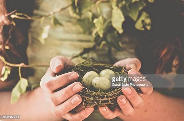 three green eggs - stadio olimpico nazionale foto e immagini stock