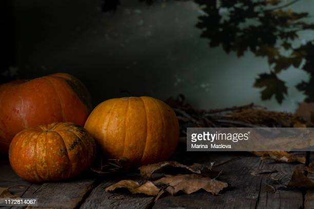 three halloween pumpkins head jack lantern