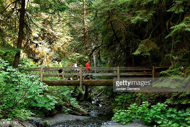Three hikers on a wooden bridge leading across a small stream in a forest.