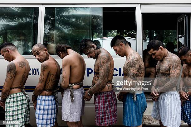 Three hundred gangs members were transferred to the prison of Quezaltepeque Libertad on March 29 2016