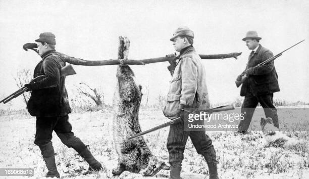 Three hunters and their oversized rabbit, 1909.