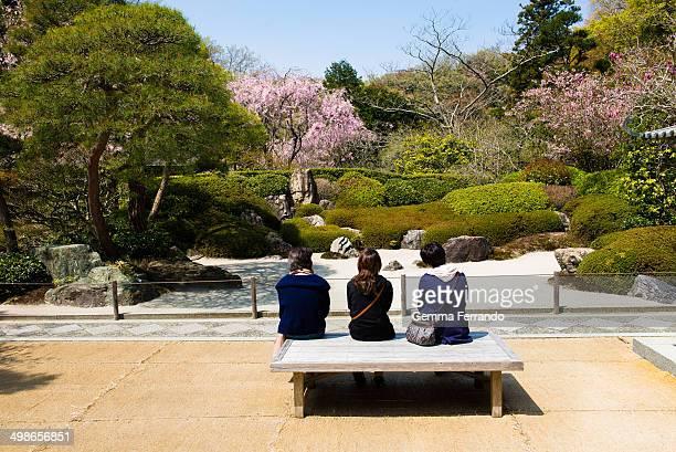 Three Japanese girls watching a garden in Kamakura during Sakura season . Japanese gardens are traditional gardens that create miniature idealized...
