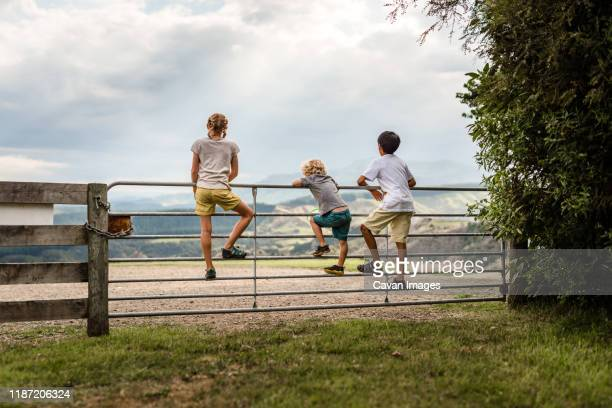 three kids climbing on a gate with mountains in the distance - new zealand stock pictures, royalty-free photos & images