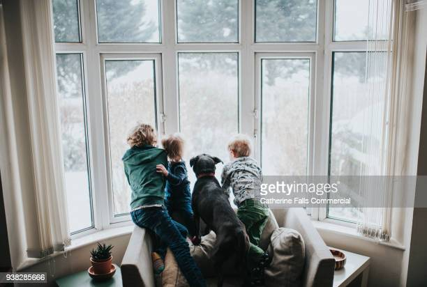 Three kids looking out a large window