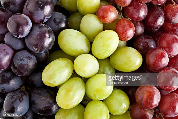 three kinds of grapes - grape stock pictures, royalty-free photos & images