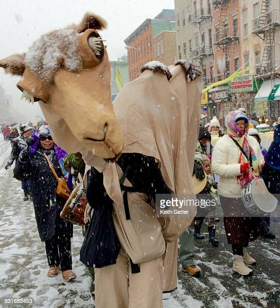 Three Kings Day Annual Parade in Spanish Harlem Manhattan NYC USA is a festive event this image shows a person in a camel costume and other...