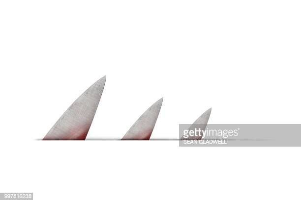 three knife blades - shark attack - fotografias e filmes do acervo