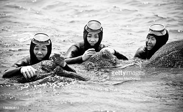 Three Korean Haenyeo take a break after a long day of diving for shellfish during a competition on Jeju Island, South Korea.