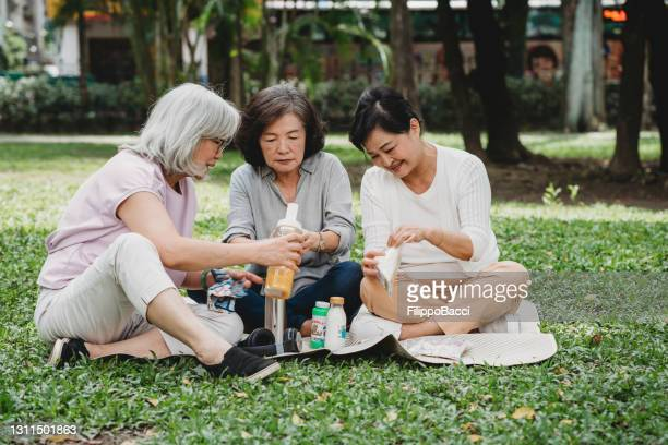 three ladies having a picnic at the park together - capital cities stock pictures, royalty-free photos & images
