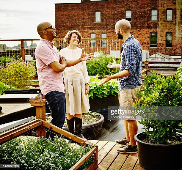 Three laughing friends in discussion on rooftop