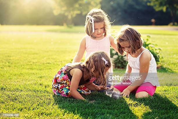 Three little girls playing with gray kitten
