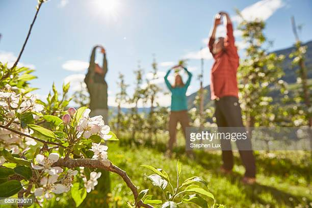 Three mature adults in filed, meditating, low angle view, Meran, South Tyrol, Italy