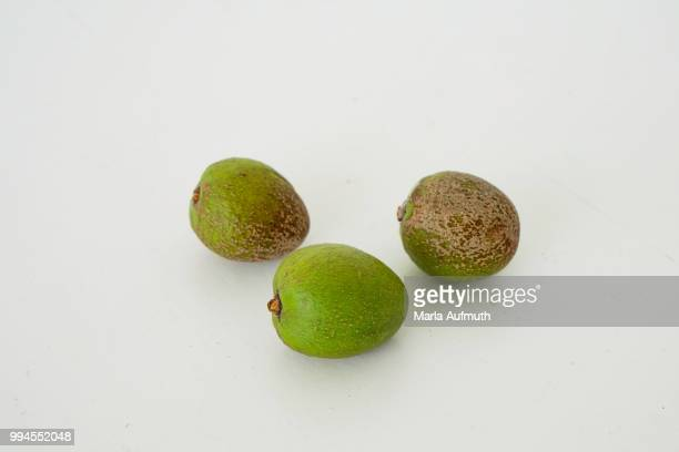three mature argan nut fruits on a white background - argan tree stock pictures, royalty-free photos & images