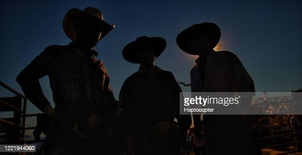 three men in silhouette wearing cowboy hats at a competitive bull riding event at night - bull riding stock pictures, royalty-free photos & images