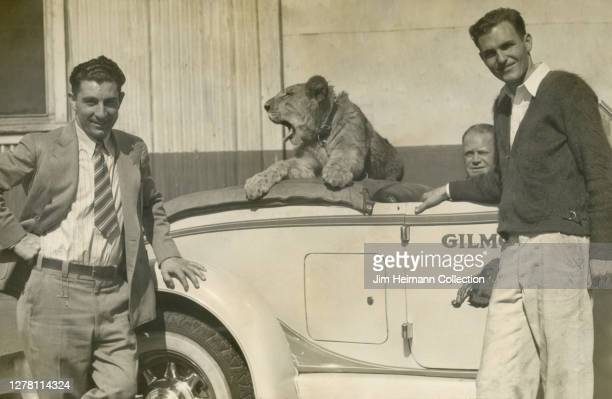 Three men pose with a race car that has a lion in the backseat, circa 1937.