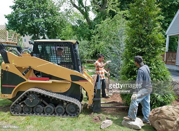 Three men using a bulldozer to plant a tree