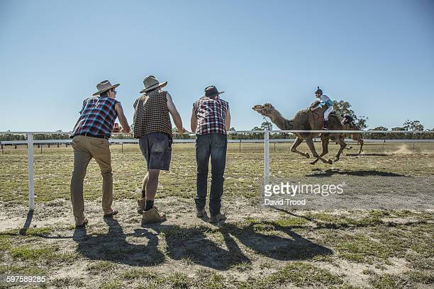 Three men watching a camel race.