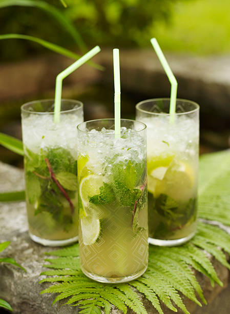 Three mojito cocktails on fern