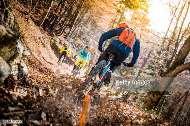 Three mountain bikers cycling uphill in a forest in fall