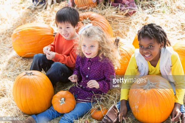 three multi-ethnic children playing in pumpkin patch - pumpkin patch stock photos and pictures
