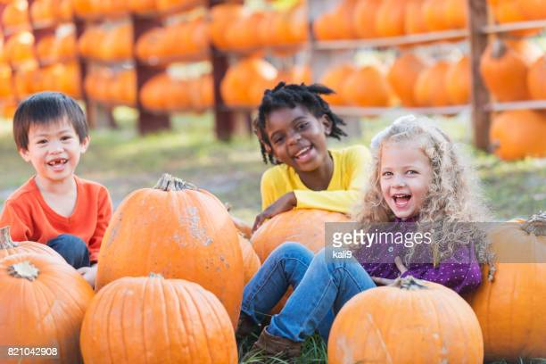 three multi-ethnic children with lots of pumpkins - pumpkin stock pictures, royalty-free photos & images
