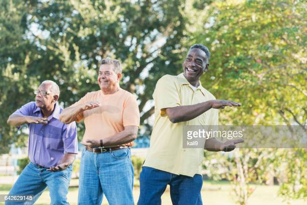 Three multi-ethnic senior men doing tai chi
