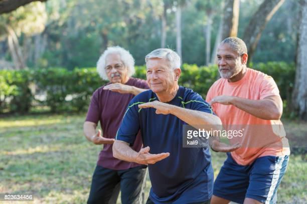 three multi-ethnic senior men in park practicing tai chi - only senior men stock pictures, royalty-free photos & images