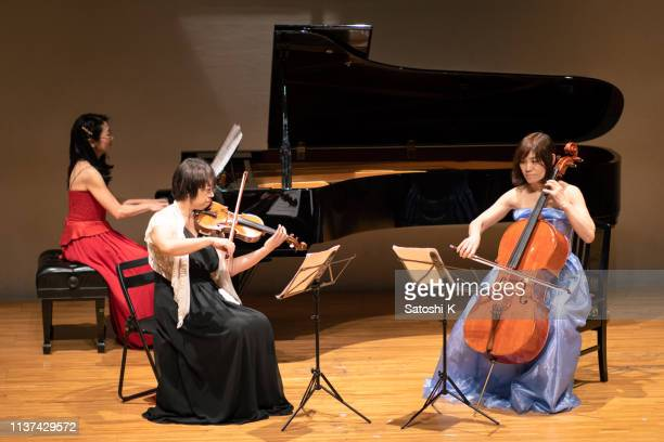 three musicians playing violin and piano at classical music concert - violin family stock photos and pictures