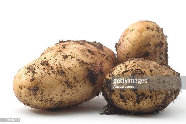 Three New Potatoes