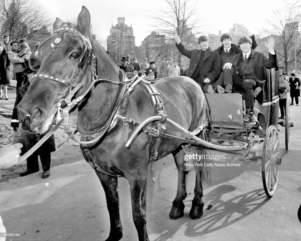a look back the horse drawn carriages of central parkの写真および
