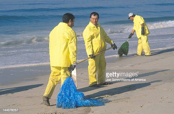 Three oil cleanup workers cleaning up the beach with adsorbent material after an oil spill covered Huntington Beach California
