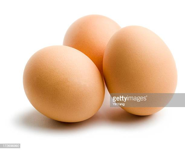three organic brown eggs, fresh dairy food isolated on white - animal egg stock pictures, royalty-free photos & images