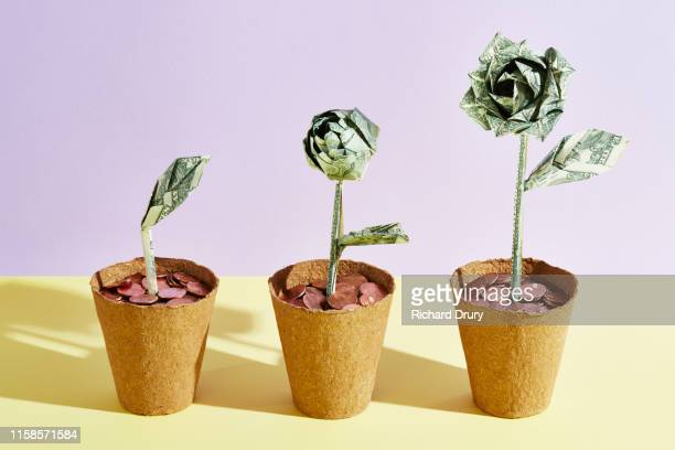 three origami dollar flowers in a row - geld stock-fotos und bilder
