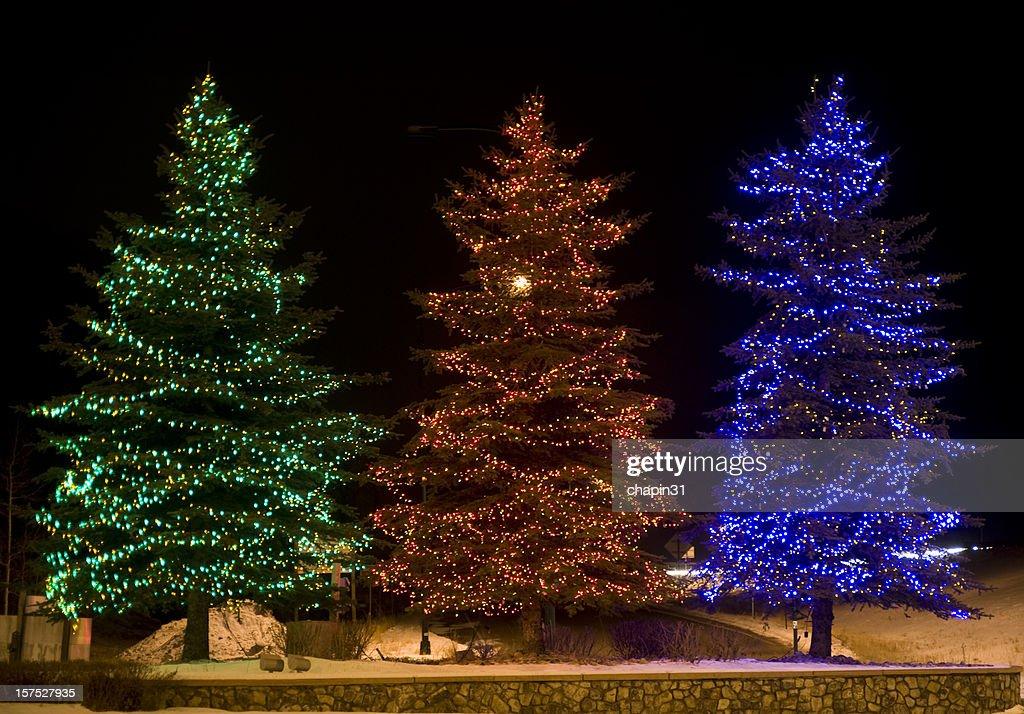 Three Outdoor Lighted Christmas Trees Stock Photo