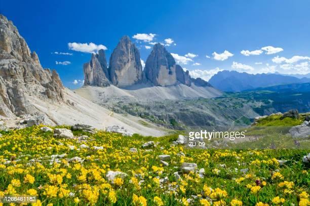 3つのラバレドピークス、ドロミテ、南チロル、イタリア - ベッルーノ ストックフォトと画像