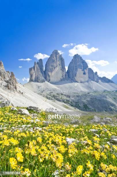 3つのラバレドピークス、ドロミテ、南チロル、イタリア - トレチーメディラバレード ストックフォトと画像